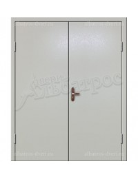Двухстворчатая металлическая дверь 02-95
